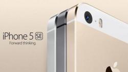 Ожидается, что смартфон iPhone 5se станет смесью iPhone 5s, iPhone 6 и iPhone 6s