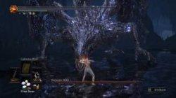 Дракона Dark Souls 3: The Ringed City победил игрок в одних трусах