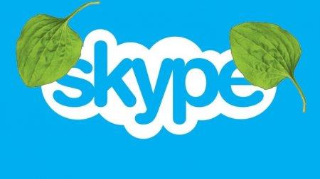 Пользователи массово заявили о проблемах в работе Skype