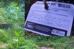 Британская полиция оставила трогательную записку хозяину марихуановой плантации