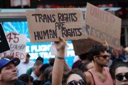 Россия обогнала Европу по интересу к порно с трансгендерами