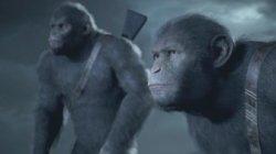 Новый трейлер Planet of the Apes: Last Frontier посвятили трудным решениям