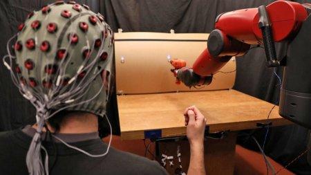 В MIT научились управлять роботами с помощью мышц и мозга