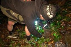 Пара блогеров нашла человеческий череп в городском лесу и была обругана в сети
